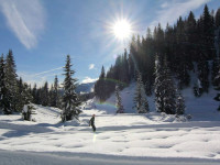 Sci di fondo e di discesa in Val di Zoldo